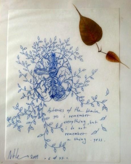 """נטלי מנדל, מס' 6 מתוך הסדרה """"קפסולות זמן"""", 2011, עט על נייר ועלים מיובשים, נתון בלמינציה, 42.3X30 ס""""מ הלמינציה, 32.7X24.7 ס""""מ גיליון הנייר"""